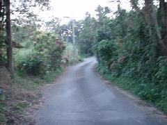 旧道の雰囲気
