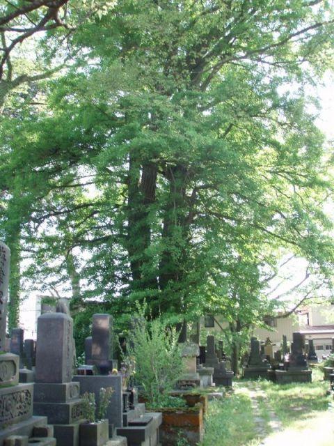 清徳寺2-2