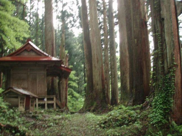 上中田弥彦神社2