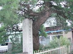 ohshu387-1